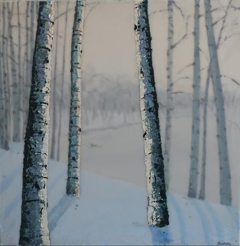 birches in winter overlooking a pond