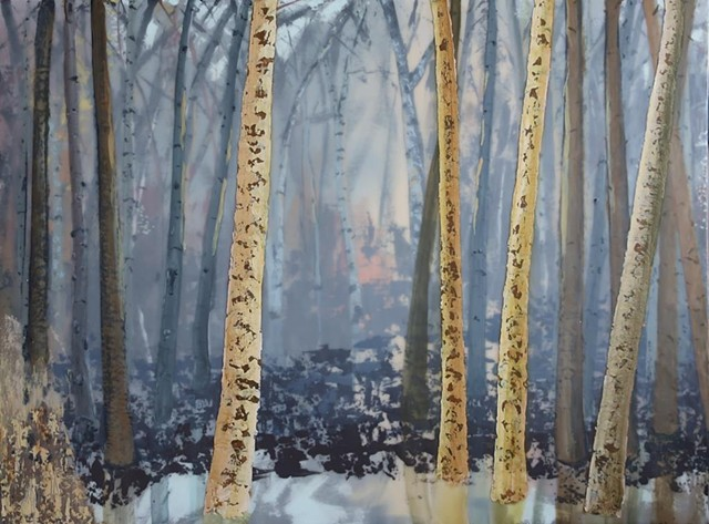 forest birches