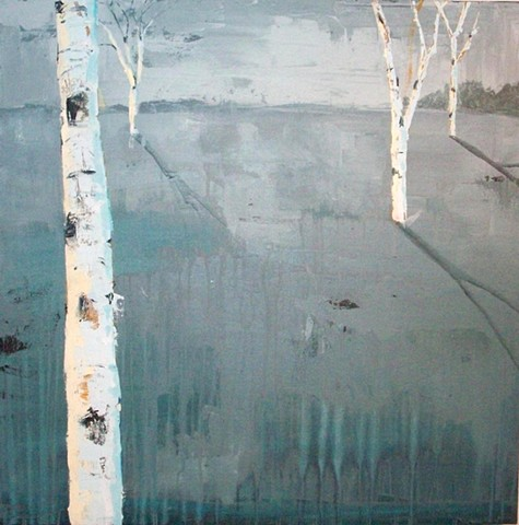 Birch trees landscape in winter