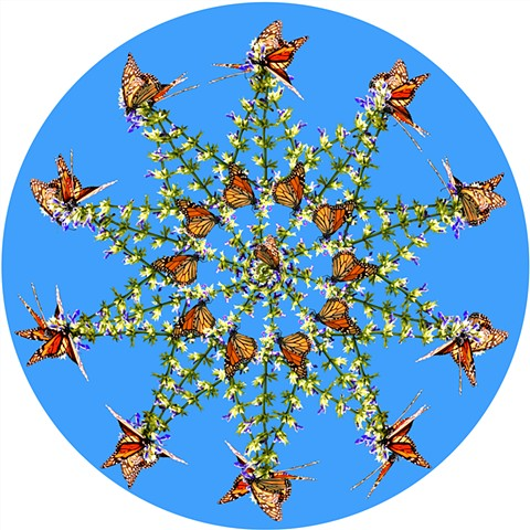 monarch 10 point star Mexico orange black green blue art by muffin sacred geometry