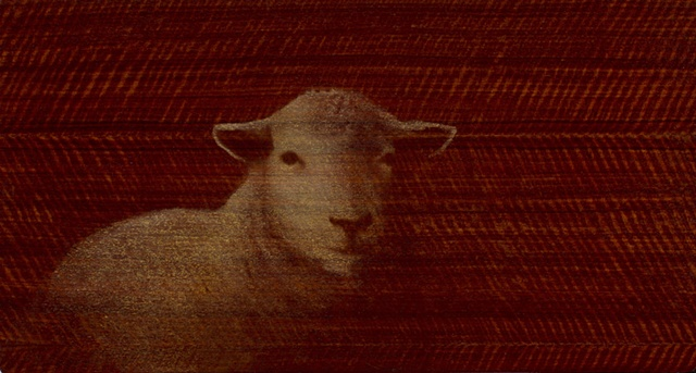 oil painting of lamb sheep on wood grained panel by susan hall
