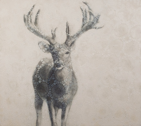 oil painting of a deer buck on lace crochet background by susan hall