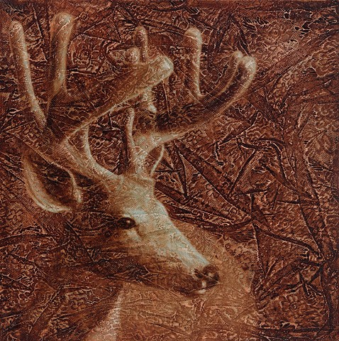oil painting of a deer buck on lace background brown by susan hall