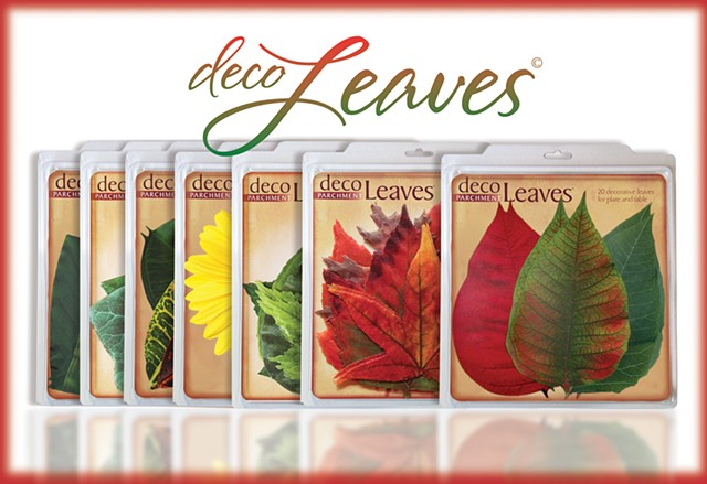 DecoLeaves Postcard