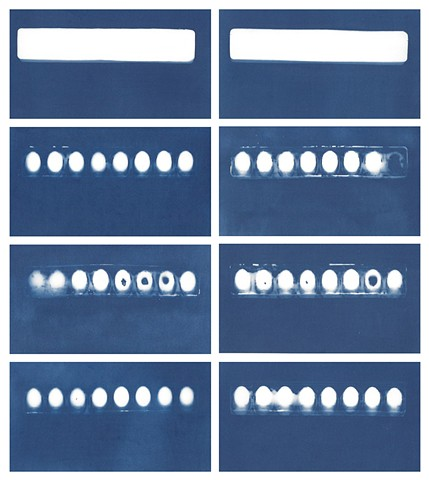 Cyanotype Archive: Paint Trays