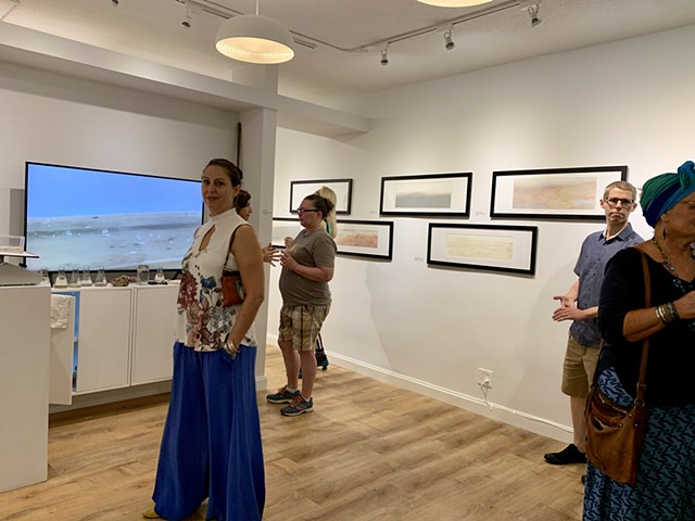 Trace Elements, October- November, 2019, two-person exhibition with Kenny Jensen, Urban Arts Gallery, St. Petersburg, FL