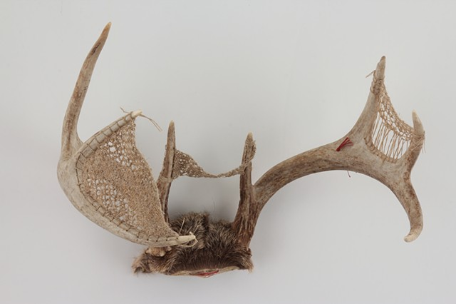 embroidered antlers