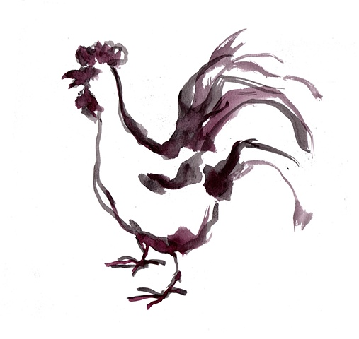 Rooster, ink drawing