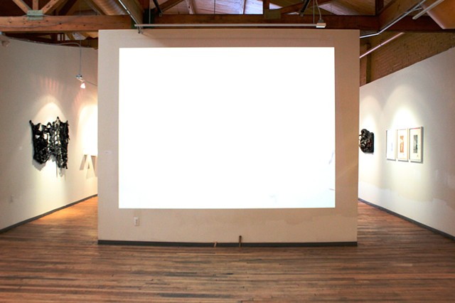 ECHOES IN A SHALLOW BAY installation view