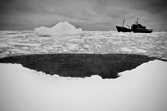 | STEVE IRVIN MOVING SLOWLY THROUGH AN ICE FIELD