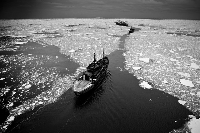 | CHASING THE NISSHIN MARU THROUGH ICE