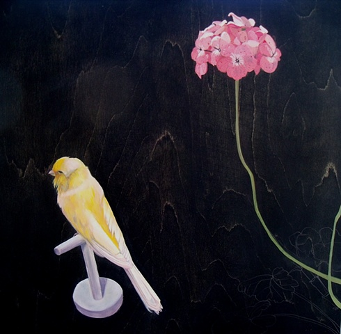 Budgerigar and Geranium SOLD