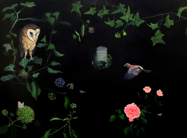 Bees, Barn Owl, Butterfly and Jay