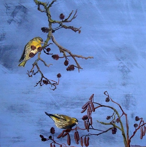 Siskins and Catkins  SOLD