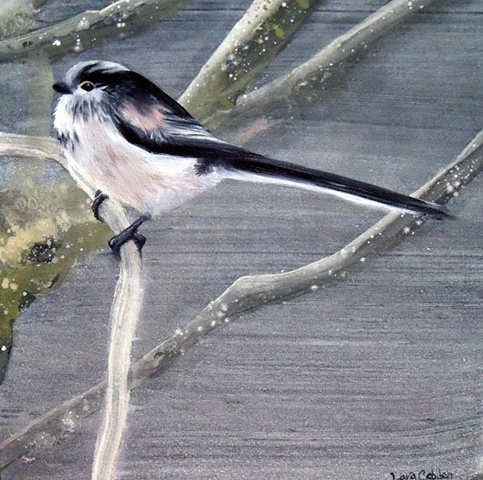 Long Tailed Tit l  SOLD