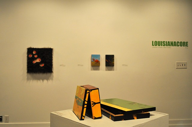 LOUISIANACORE Installation View #7