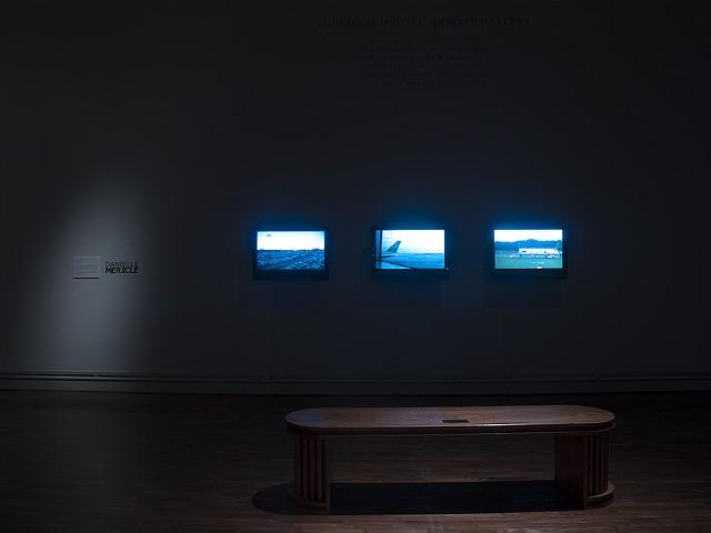 Magnetic Landscape, Danielle Mericle