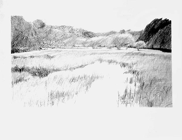 Achalafalaya marsh