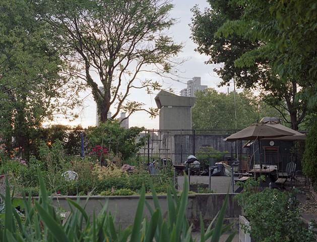 Community Garden, Roosevelt Is, June 2013