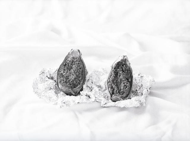 Rotten Bread Fruit