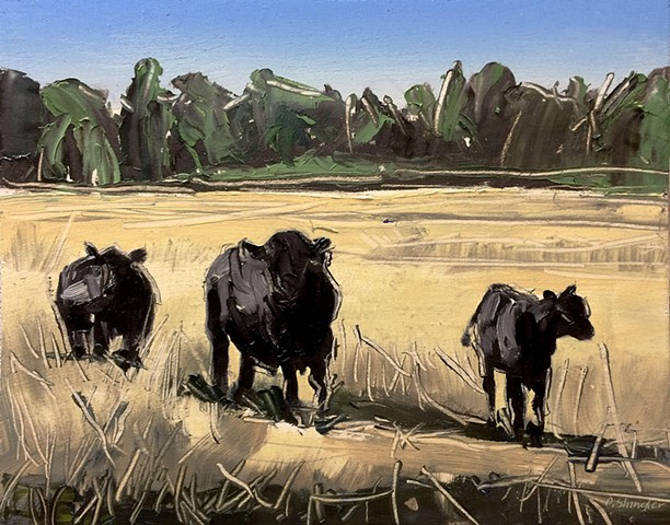 "'Montana Cows'  8""x10"" Oil on wood"