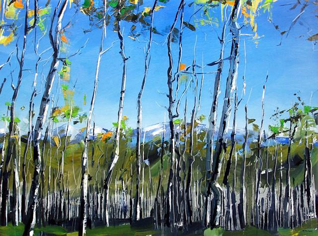 "'Aspen Forest. Telluride, CO'  36""x48"" Oil on wood 2014"