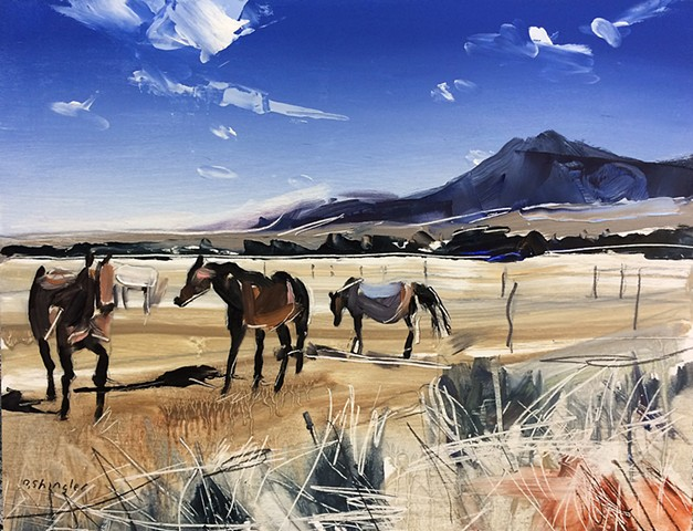 "'Grazing Horses. Montana' 11""x14"" Oil on wood"
