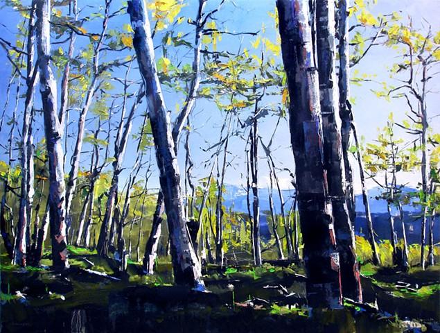"'Telluride Spring'  36""x48"" Oil on wood"