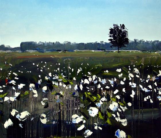 "North Carolina Cotton Field'  24""x28"" Oil on wood"