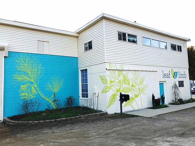 Mural for Leaf & Limb
