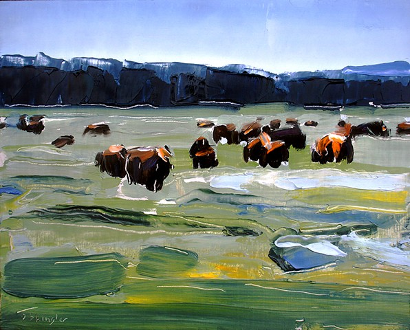 "'Bison Heard. Yellowstone'  8""x10"" Oil on wood"