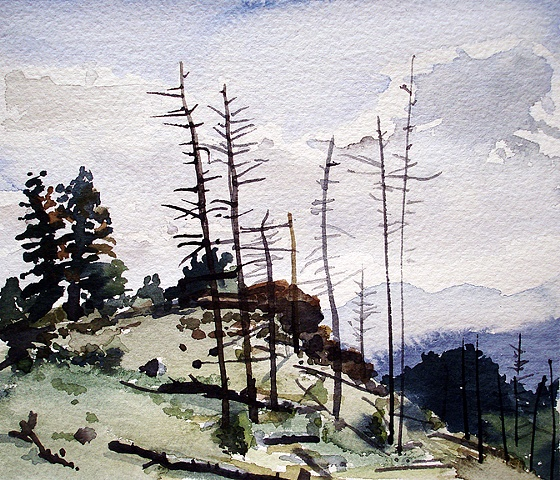 "Colorado. Mt. Falcon  7""x8"" Watercolor"
