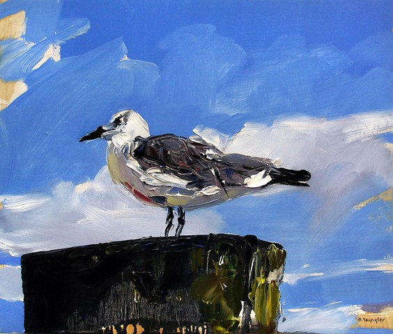 "'Seagull. Morehead City, NC'  12""x14"" Oil on wood."