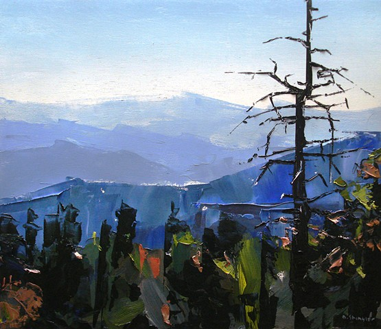 "'Blue Ridge Mountains. NC' 12""x14"" Oil on wood"