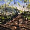 "'Telluride Colorado' 42""x54"" Oil on wood"
