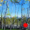 "'Aspen Forest. Telluride, CO'  36""x48"" Oil on wood 2014"