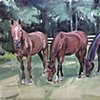 "'3 Horses. Dane, Ali and Vegas' 33""x44"" Oil on wood"