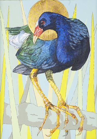 Saintly Swamp Hen
