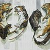 Rodent Still Life