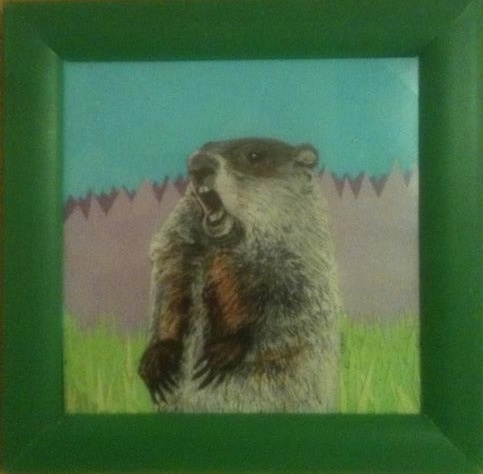 How much wood can a Woodchuck Chuck?