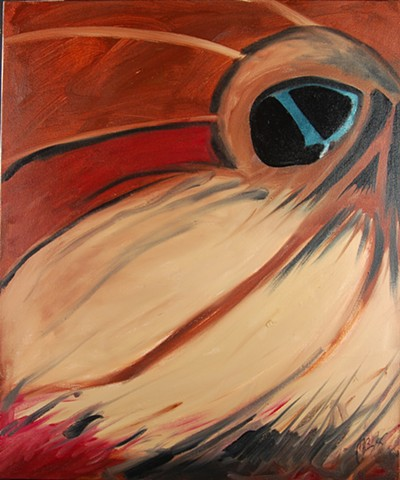 The Abstract Tableau, squirrel, surrealism modern eye