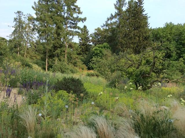 Botanischer Garten-Dahlem, Freie Universität Berlin