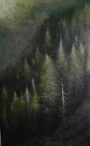 """""""Near Bear Canyon"""""""