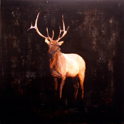 """Solo Elk"""