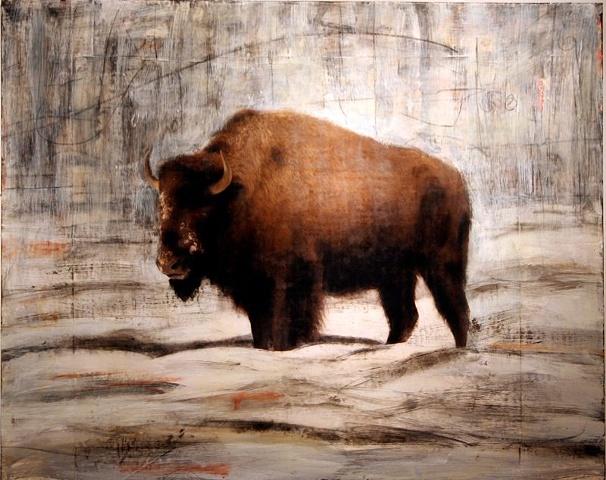 """Buffalo"""