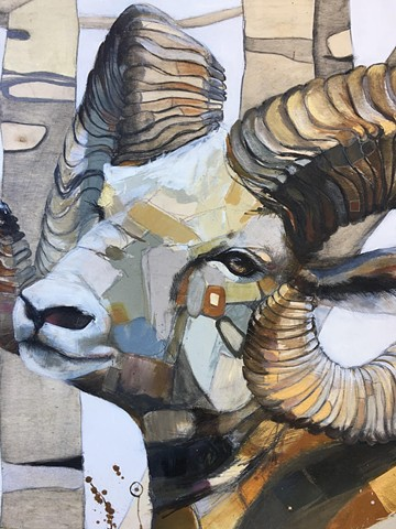"""The Honorable Ovis Canadensis, Bighorn Sheep, Ambassador of The Heart"""