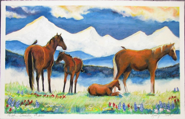 """High Country Mares"""