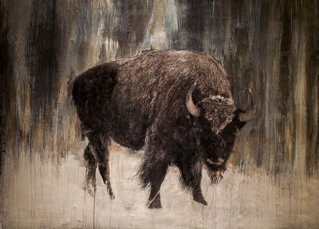 """""""Wild Bison"""""""