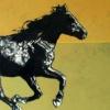 """""""Horse Plains Power"""""""