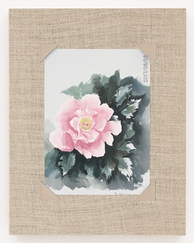 Watercolor of a Peony